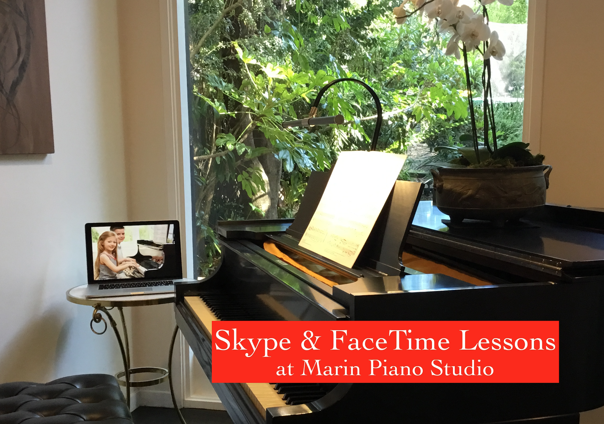 Skype and FaceTime Lessons